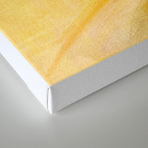 fff Canvas Print