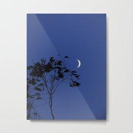 Smiling Moon Metal Print