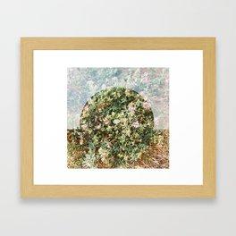 Little Wheel on the Prairie  Framed Art Print