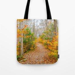 Never Ending Path Tote Bag
