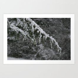 Snowy Day 3 Art Print
