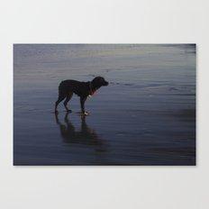 Lonesome Canvas Print