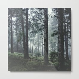 Path Vibes Metal Print