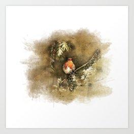 Robin the Redbreast Art Print