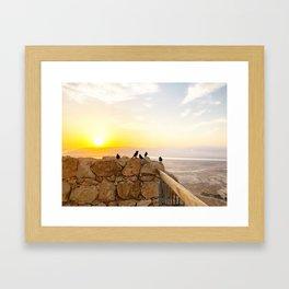 Sunrise birds of the Judean Desert Framed Art Print