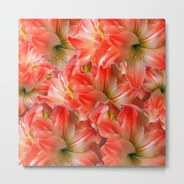 Pink & Red Amaryllis Patterns Floral Art Metal Print