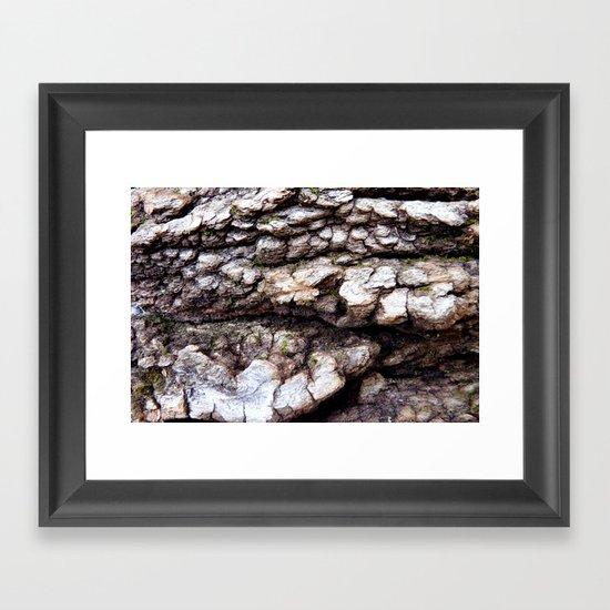 Wood Texture #1 Framed Art Print