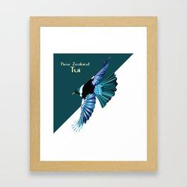 New Zealand Birds - The Tui Framed Art Print