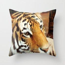 Amur Tiger II Throw Pillow