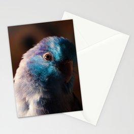 Calm Blue Boy Stationery Cards