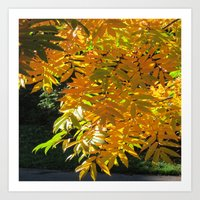 Fallbeauty/Golden Foliage Art Print