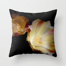 Sun Blooming Cactus Throw Pillow