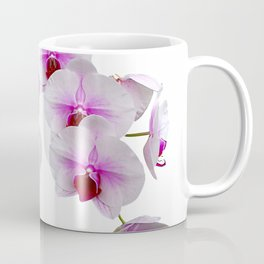 White and red Doritaenopsis orchid flowers Coffee Mug