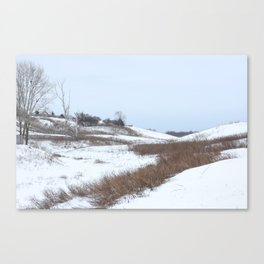 Beautiful Winter Scenery Canvas Print