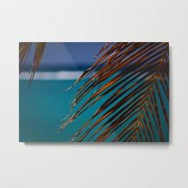 ocho rios, jamaica Metal Print