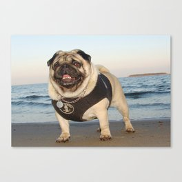 Pug at the beach,seaside theme dog,beach dog print,seaside dog print,dogs at the beach,dog wall art Canvas Print