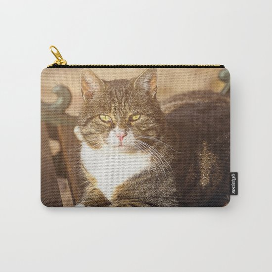 Cute cat relaxing in the sun on old bench Carry-All Pouch