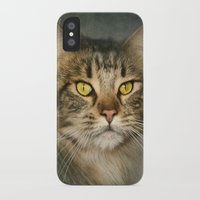 maine iPhone & iPod Cases featuring Maine Coon by Pauline Fowler ( Polly470 )