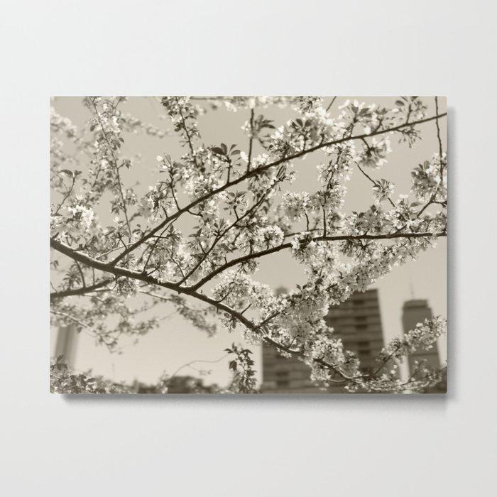 Spring Blossoms #04 Metal Print
