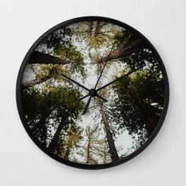 Muir Woods, California Wall Clock