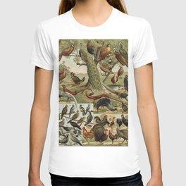 Birds of the World T-shirt