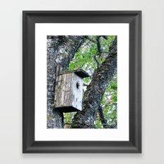 Old bird box Framed Art Print