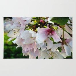 Cheery Cherry Blossoms Rug