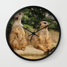 Meerkat_2015_0120 Wall Clock