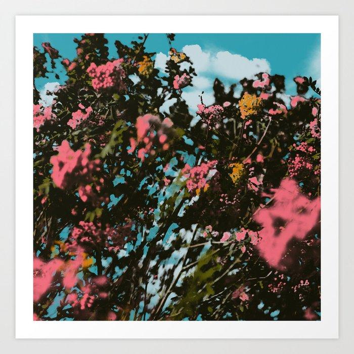 Birch Island Print Art Print