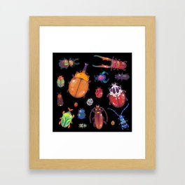 Beetle Framed Art Print