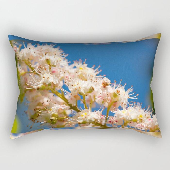 Macro of blooming Aesculus Rectangular Pillow