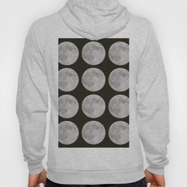 Moons of the Earth Hoody