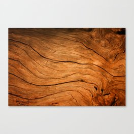 Wood Texture 99 Canvas Print