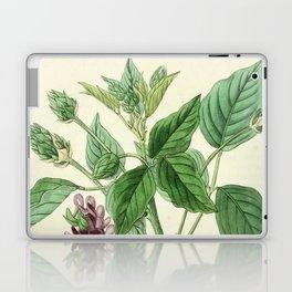 Faboideae Laptop & iPad Skin