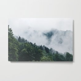 Moody Forest Metal Print