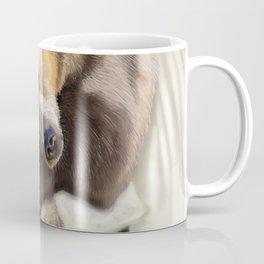 Sweet dreams, Mr Bear Coffee Mug