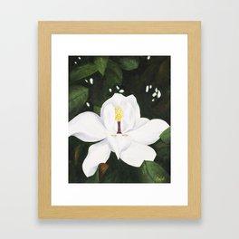 Magnolia I Framed Art Print