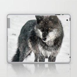Alpha Wolf Laptop & iPad Skin