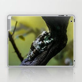 Frog Far From Home Laptop & iPad Skin