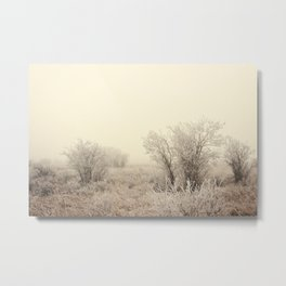 Brisk Winter Morning Metal Print