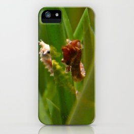 The Tryst iPhone Case