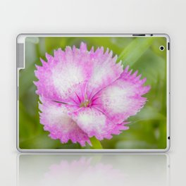 Soft Petals Laptop & iPad Skin