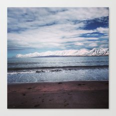 black sand beach Canvas Print