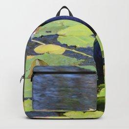 Purple Gallinute Backpack