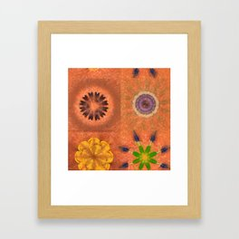 Evolving Truth Flowers  ID:16165-093100-83380 Framed Art Print