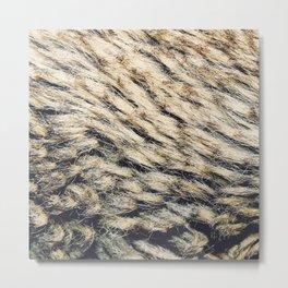 Fur 3 Metal Print