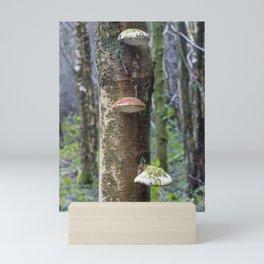 Oyster Fungi Mini Art Print