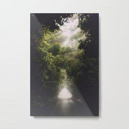 Foggy Side Road Metal Print