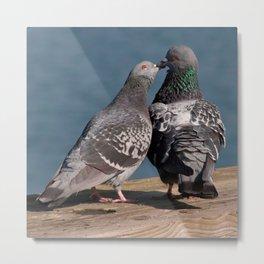 Kissing or Feeding Metal Print