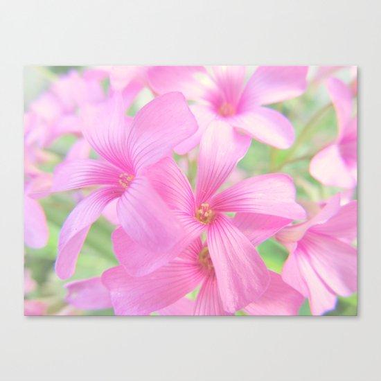 Coral Pink Petals Canvas Print